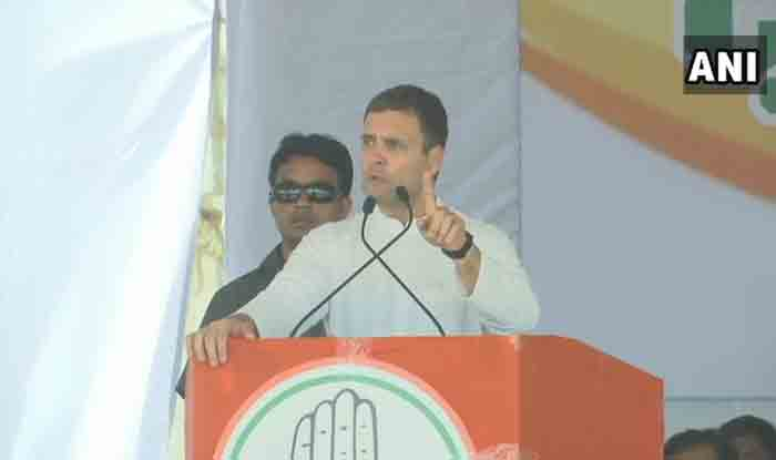 Will Give Special Category Status to Andhra Pradesh if Voted to Power: Rahul Gandhi