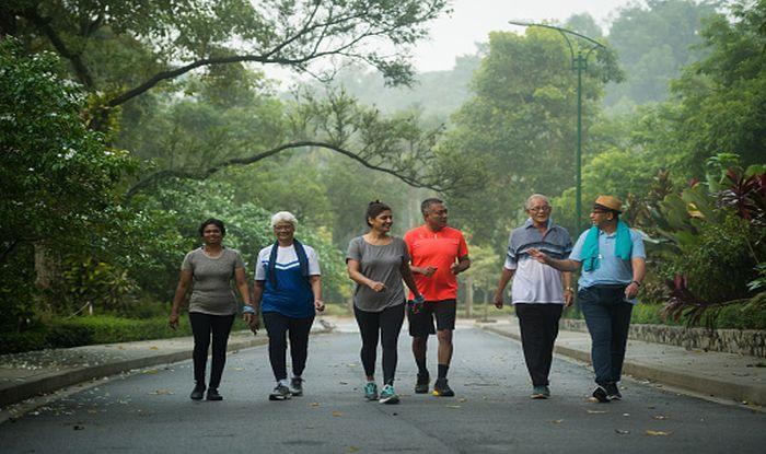 Walking arthritis pain exercise