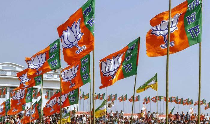 Lok Sabha Elections 2019: BJP Sets Congress' Tail on Fire in Jaipur, Alwar, Bharatpur, Karauli–Dholpur, Dausa, Tonk–Sawai Madhopur and Ajmer Seats in Rajasthan