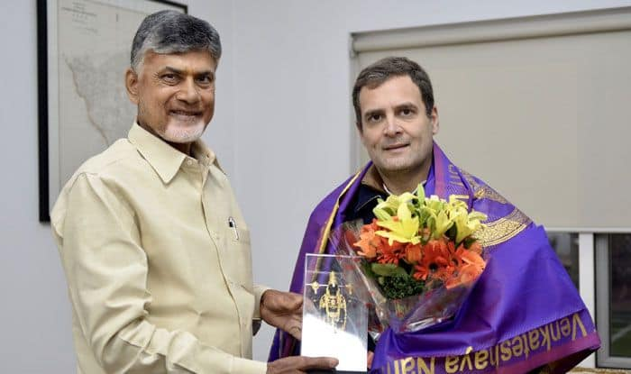 Chandrababu Naidu meets with Rahul Gandhi. Photo Courtesy: IANS