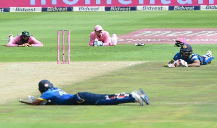 Bee Attack, Bee Attack in World Cup 2019, ICC Cricket World Cup 2019, Bees Stop Play World Cup, Sri Lanka vs South Africa, SL vs SA Bee Attack, Cricket News, Bees Stop Play in World Cup, SL vs SA World Cup, World Cup 2019, Faf du Plessis, Lasith Malinga