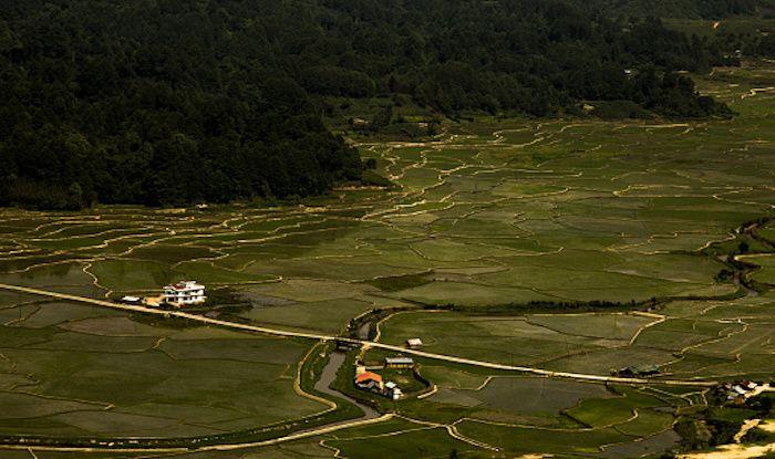 Ziro: A Peace Seeker's Paradise in Arunachal Pradesh