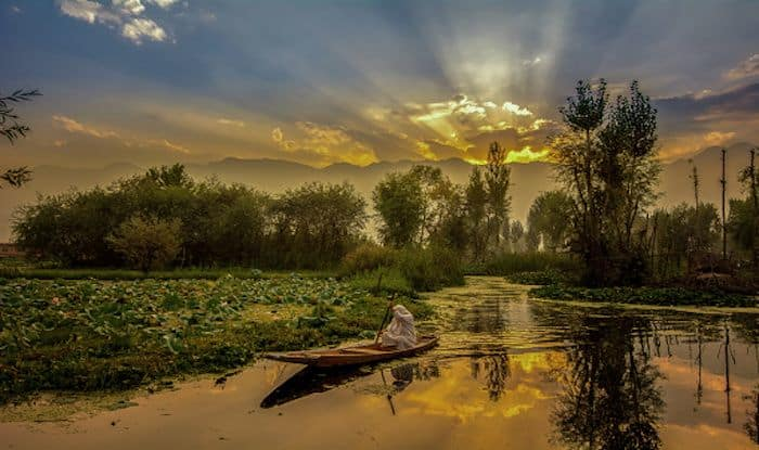 Top 5 Must-Have Experiences in Srinagar