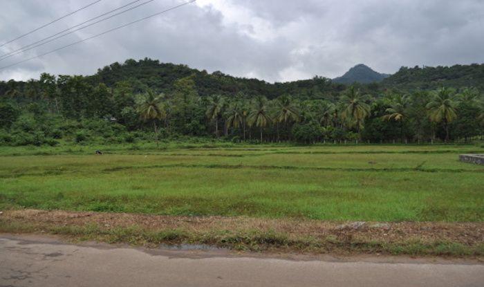 Nilambur: A Visual And Sensory Delight in Kerala