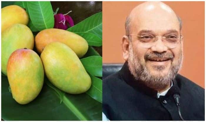 After Modi Mango, Here's a New Variety of Mango 'Shah' Named After Amit Shah