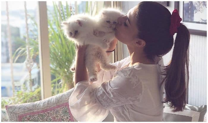 Jacqueline Fernandez Explaining Her 'Mummy' Responsibilities to 'Loki' is All Cat Parents Ever!