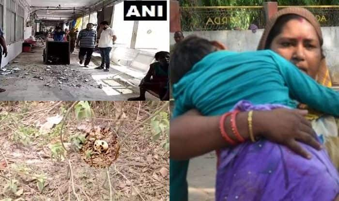 Bihar Health Crisis: 130 Encephalitis Deaths, Hospital Roof Collapsing, Skeletons in Backyard | All You Need to Know