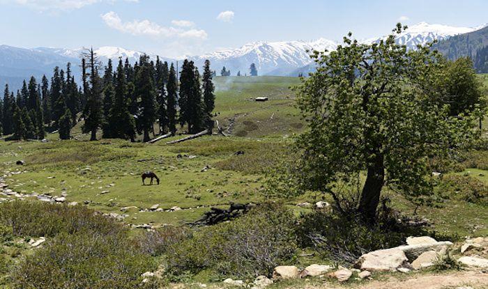 Baramulla: A Gateway to Kashmir Valley