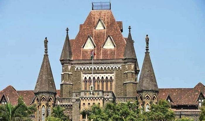 Bhima-Koregaon Case: Bombay HC Referred to 'War and Peace in Junglemahal' And Not Leo Tolstoy's Literary Classic
