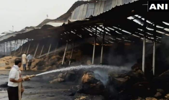 Fire Breaks Out at Ambala Anaj Mandi, Short-circuit Likely Cause