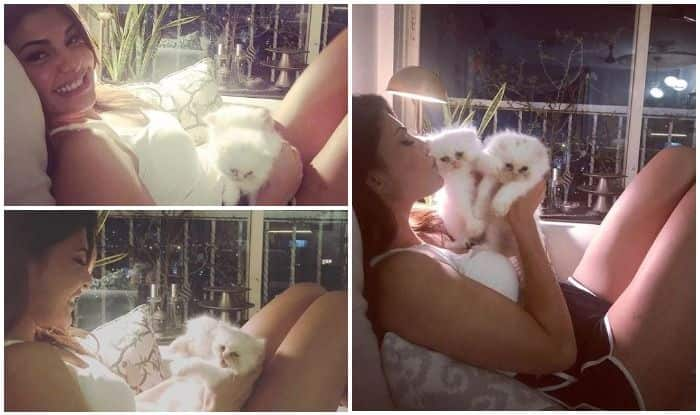 Jacqueline Fernandez Can't Help But Feel Mushy as She Calls it a Night With Her 'Cuddle Monsters'