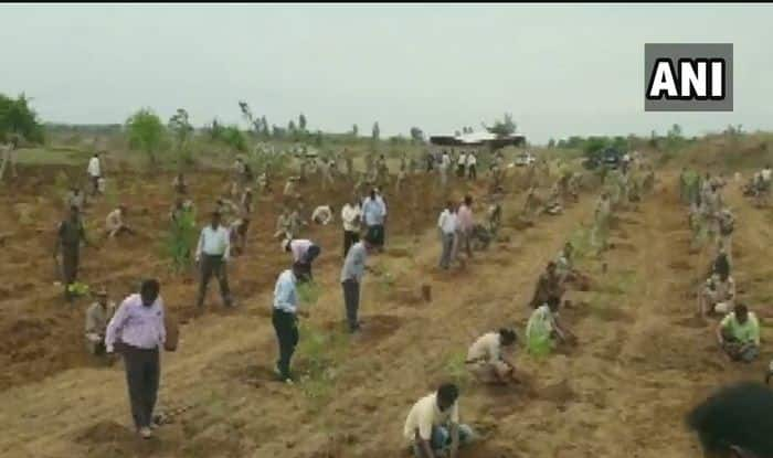 Telangana Forest Officials Begin Plantation Drive in Protest Against Assault on Colleagues by TRS Workers