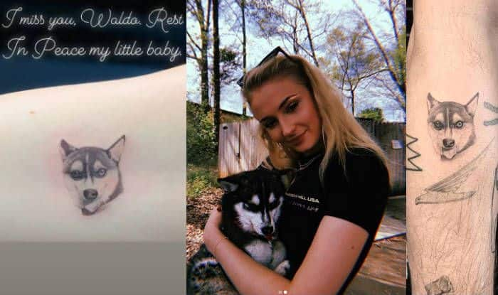Sophie Turner And Joe Jonas Get Late Dog Waldo Picasso's Picture Inked on Their Arms