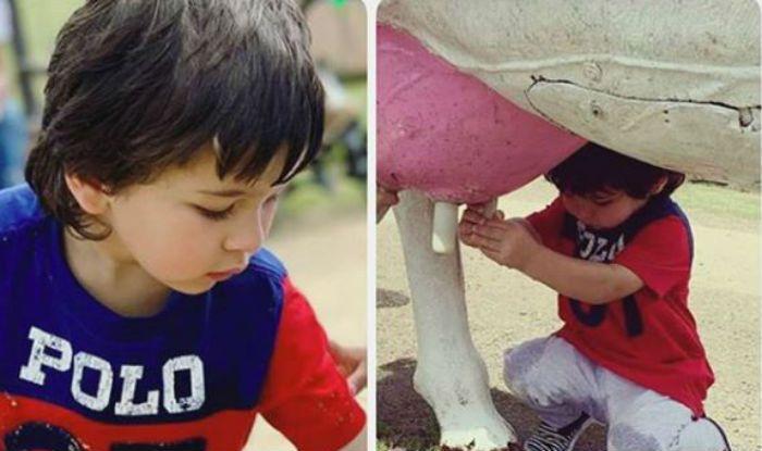Taimur Ali Khan, Inaaya Naumi Kemmu And Kainaat Singha Take Part in Farm Activities, Milk a Cow- Check Videos