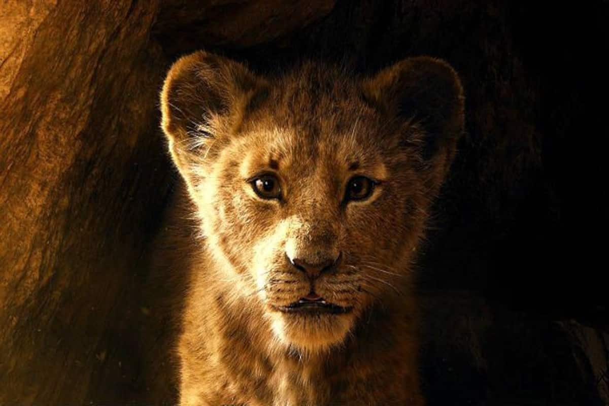 The Lion King Movie Full Hd Available For Free Download Online On Tamilrockers And Other Torrent Site The Lion King Movie Full Hd Available For Free Download Online On Tamilrockers And Other