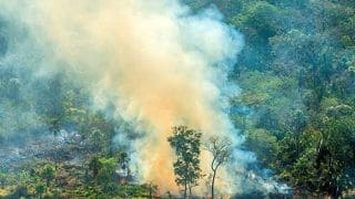 'Reforest Europe', Says Brazil Govt Rejecting $22 Million G7 Aid to Fight Amazon Fires