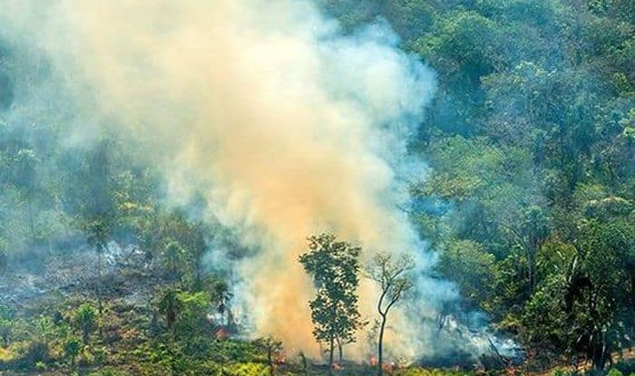 Amazon burning, Amazon fire, Brazil, Rainforest Trust, Rainforest Alliance