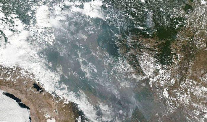 Amazon burning, Amazon fire, Brazil, Rainforest Trust, Rainforest Alliance