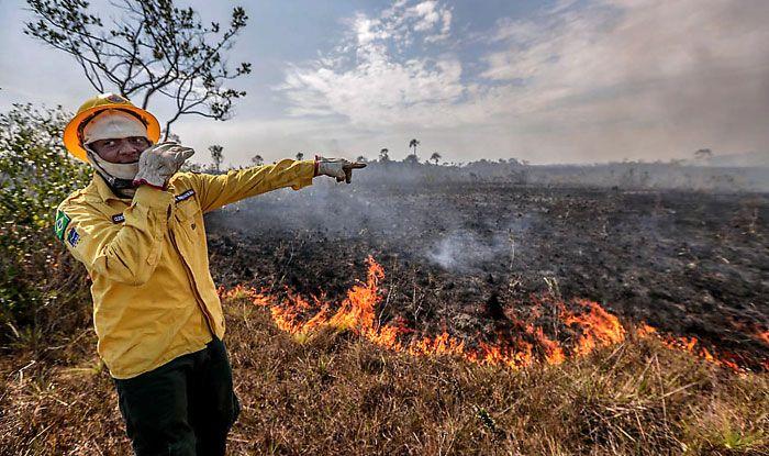 Amazon fire, Land clearance, Jair Bolsonaro, Brazil