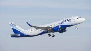 Airfare Sale: IndiGo, Ethihad Among Others Slash Prices on Middle-east Trips