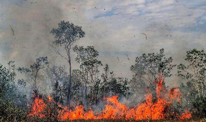 US, Amazon wildfires, Brazil, G7 countries, Jair Bolsonaro, Emmanuel Macron