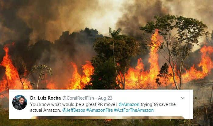 Twitterati Ask Amazon Founder And World's Richest Man Jeff Bezos to Protect Amazon Rainforest From Fire