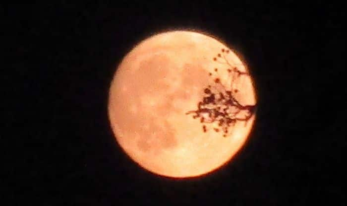Full Harvest Moon Falls on Friday The 13th, Know India Timings And Everything Related to it