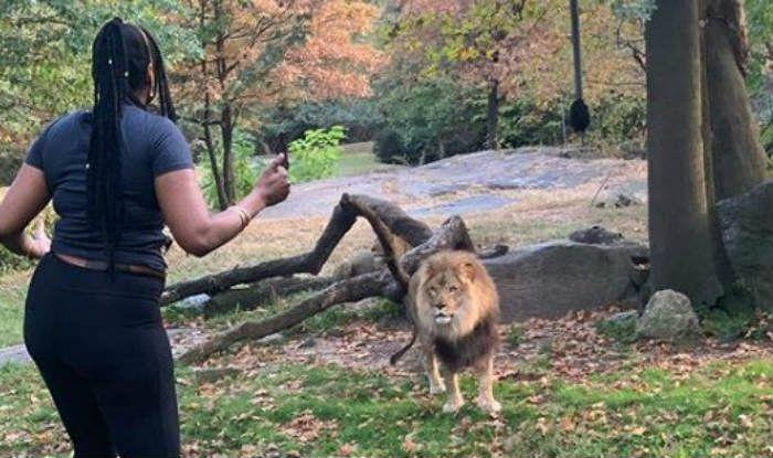 Woman inside New York zoo