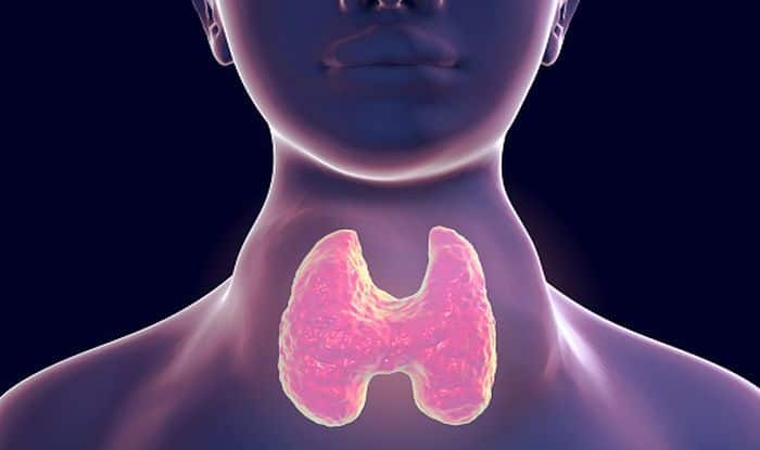 Hypothyroidism: Effective Home Remedies to Treat The Condition