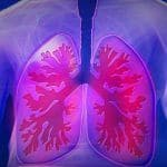 Obesity Can Lead to Fat Accumulation in Lungs, Opt For These Natural Ways to Keep The Organ Clean And Healthy