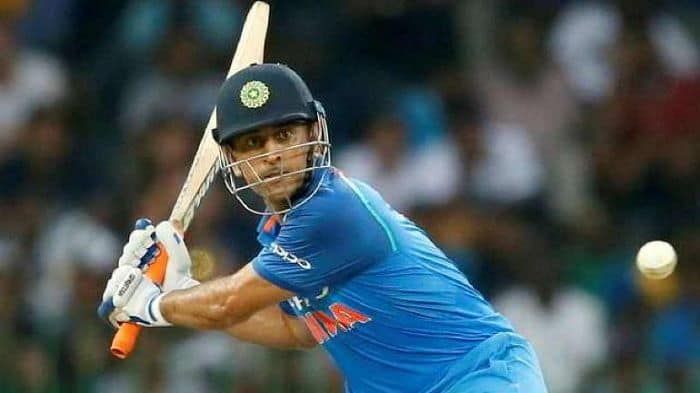 It's Up To MS Dhoni To Take A Call On His Retirement: Shane Watson