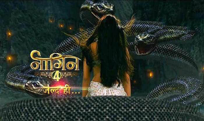 This is The Reason Why Naagin 4 Could Just be Delayed Till December This Year