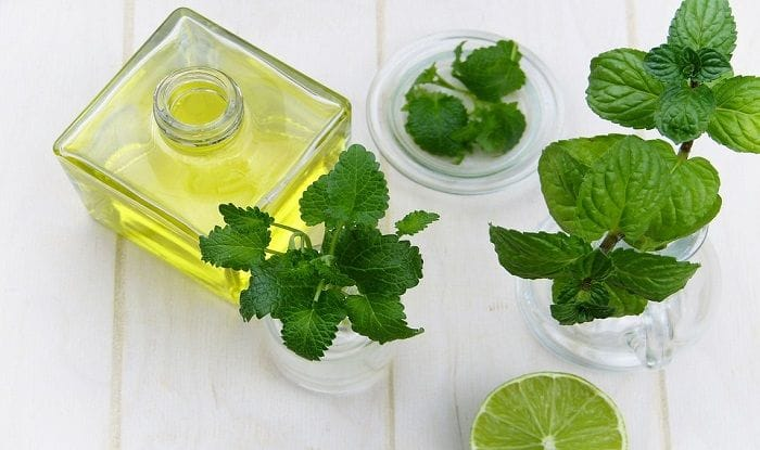 Peppermint Oil: Here is How it Enhances Your Beauty