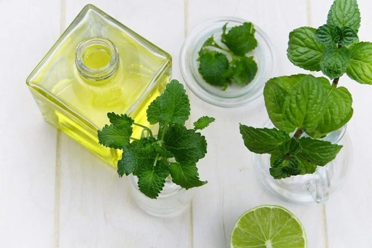 Image result for high quality images of apple cider vinegar and pipermint lives