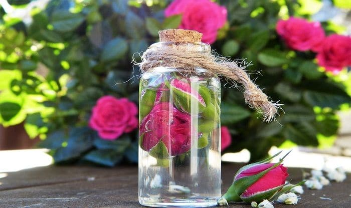 Rose Essential Oil: Natural Way To Treat Wounds, Ease Menstrual pain