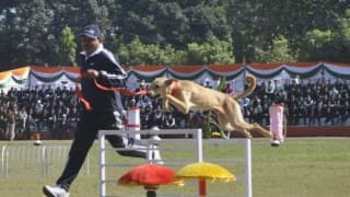 In a First, Uttarakhand Police Trains Street Dogs to Recruit Them in Dog Squad