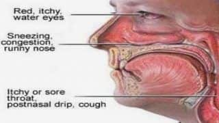 Exposure to Air Pollution Can Cause Severe Rhinitis, Know All About The Infection