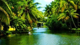 Kerala To Welcome Tourists from Early October: Here Are Top 5 Destinations For Your Trip To God's Own Country