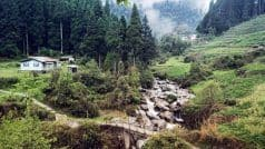 Gorkhey: Snuggled Between the Borders of Darjeeling and Sikkim, this Valley is A Must on Every Traveller's List