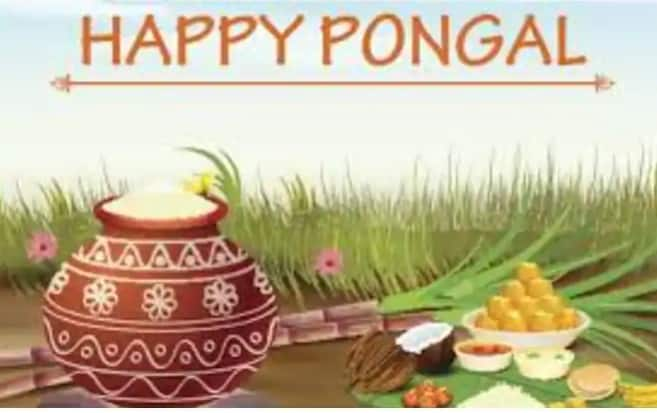 Pongal 2021: Time, History, Significance And How to Celebrate