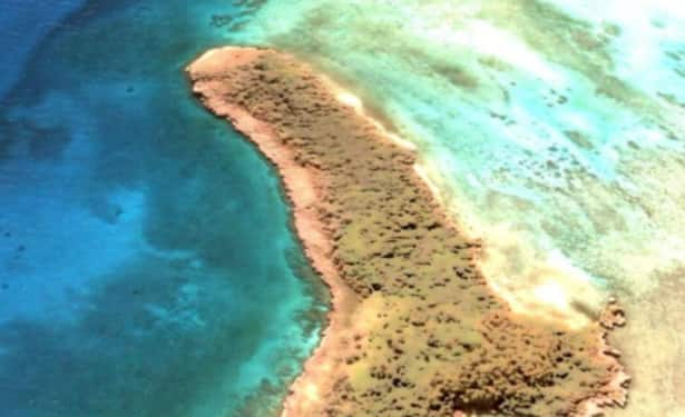 Penis Shaped Island Discovered by a Woman in The Middle of Pacific Ocean on Google Maps