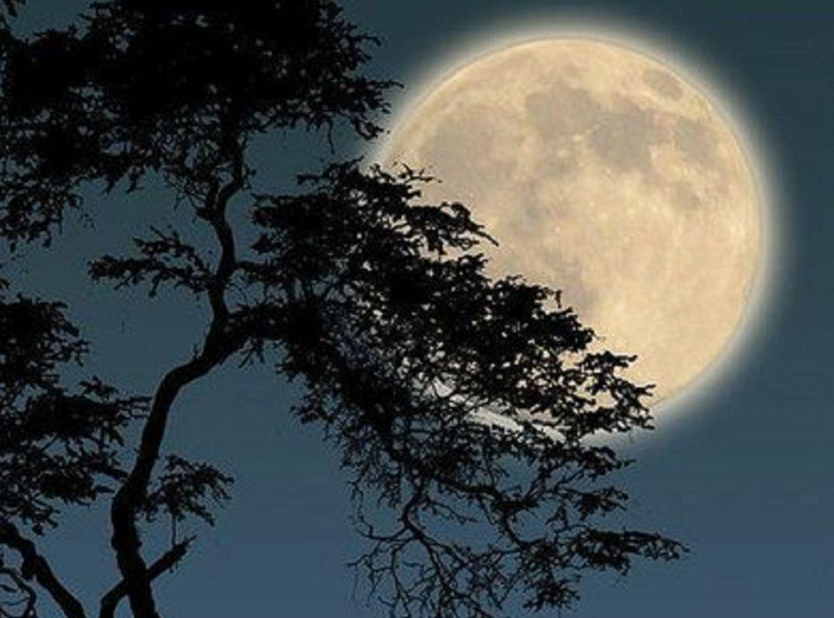 Full Moon 2021: Stunning Photos, Videos Capture Snow Moon's Beauty Around The World - India.com