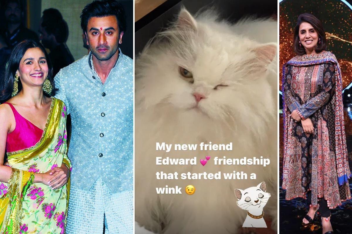 Neetu Kapoor Finds New Friend in Alia Bhatt