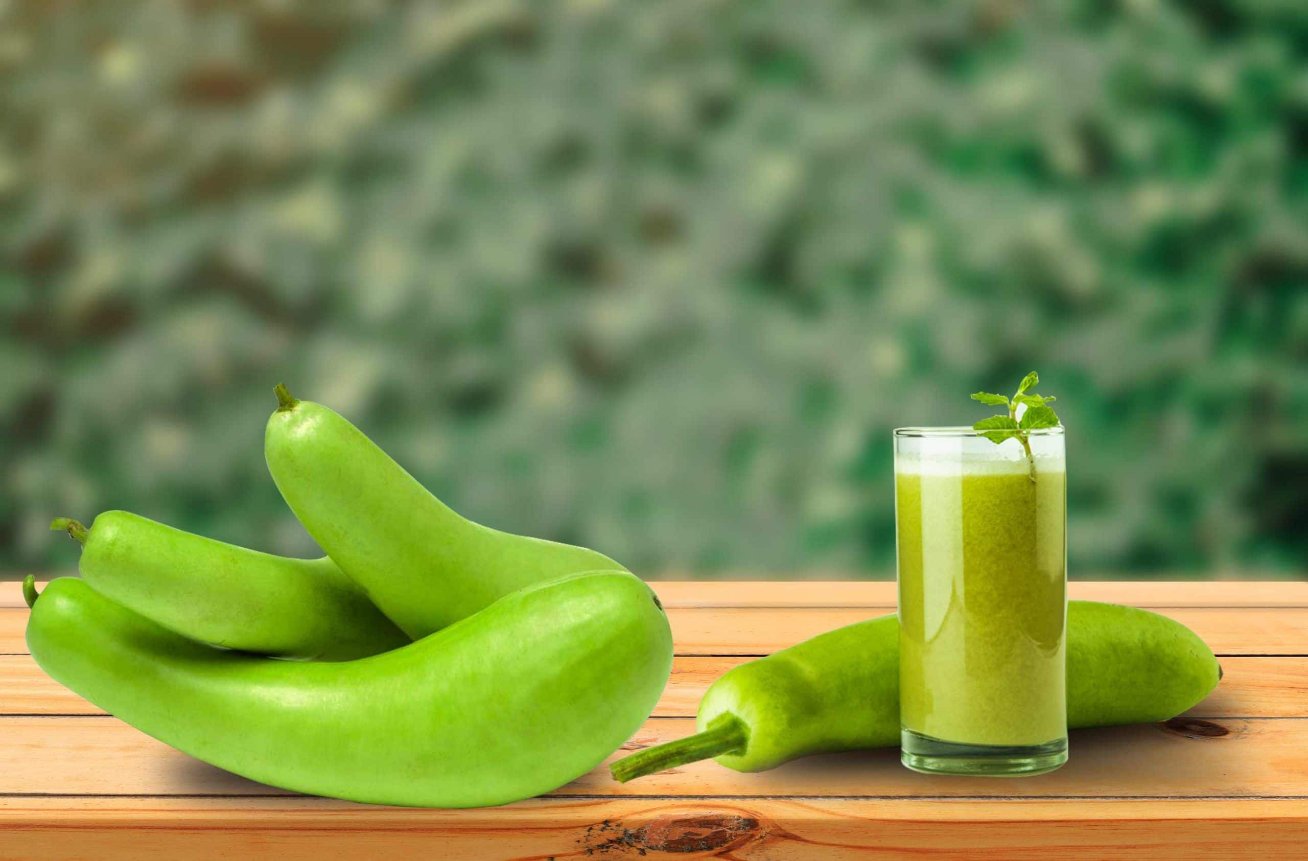 Benefits Of Lauki Juice (Bottle Gourd): How It Helps To Burn Belly Fat Fast