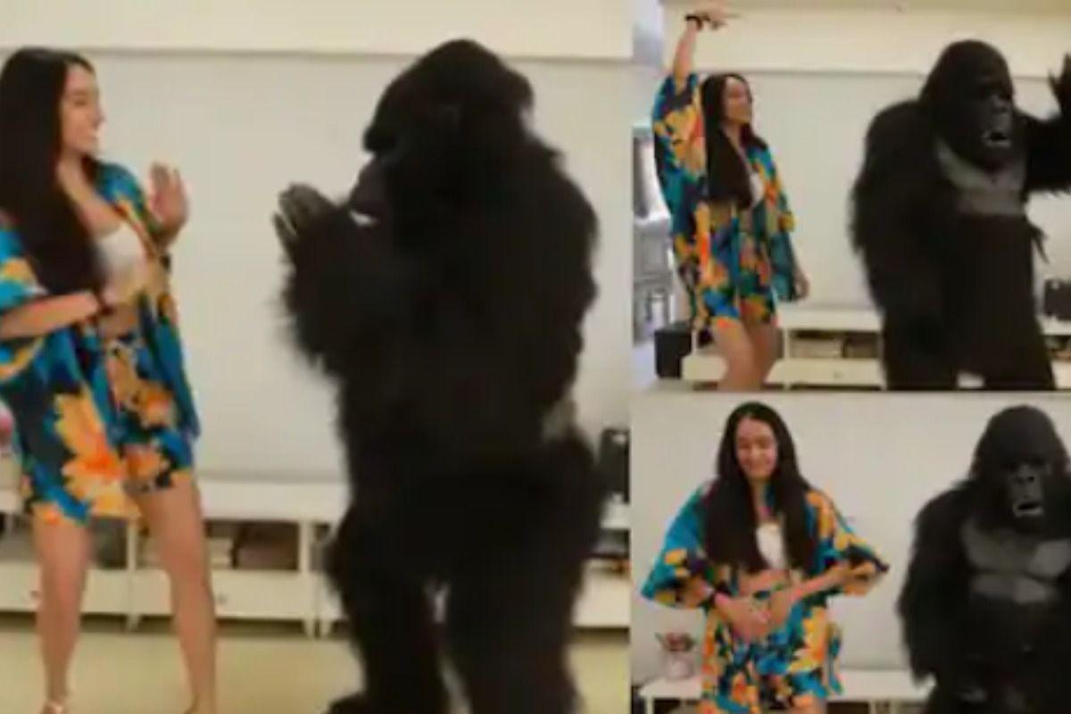Shraddha Kapoor ने गोरिल्ला के साथ हिलाई कमरिया, इस अंदाज़ में किया डांस-  Video Viral - Shraddha kapoor dances with gorilla video went viral - Latest  News & Updates in Hindi at