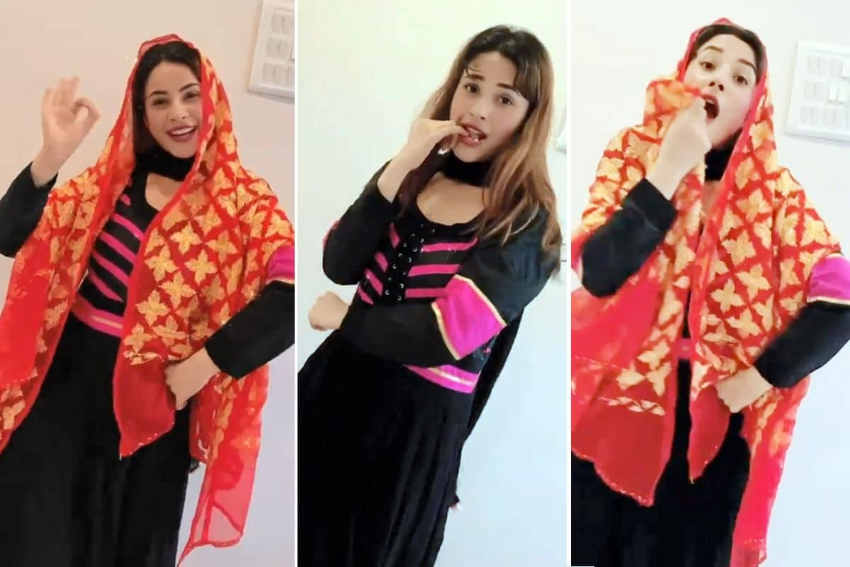 Shehnaaz Gill Flaunts Her Thumkas on Punjabi Song Deor De Vyah Vich, Fans Call Her Wow