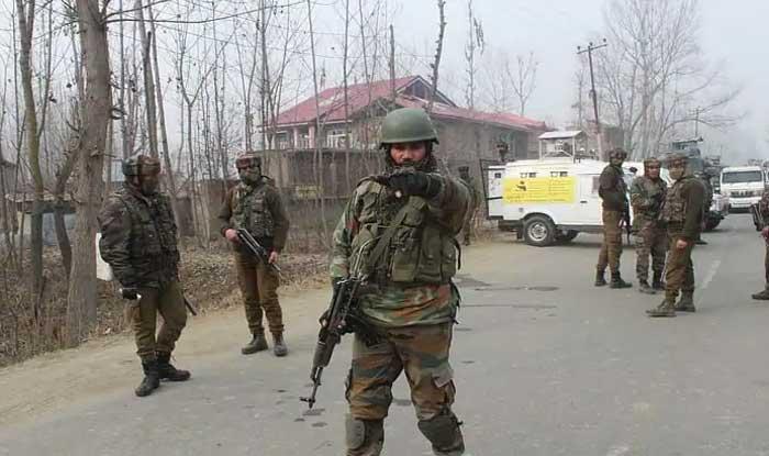 Top Hizbul Mujahideen Commander Killed in Handwara Encounter: Kashmir Police