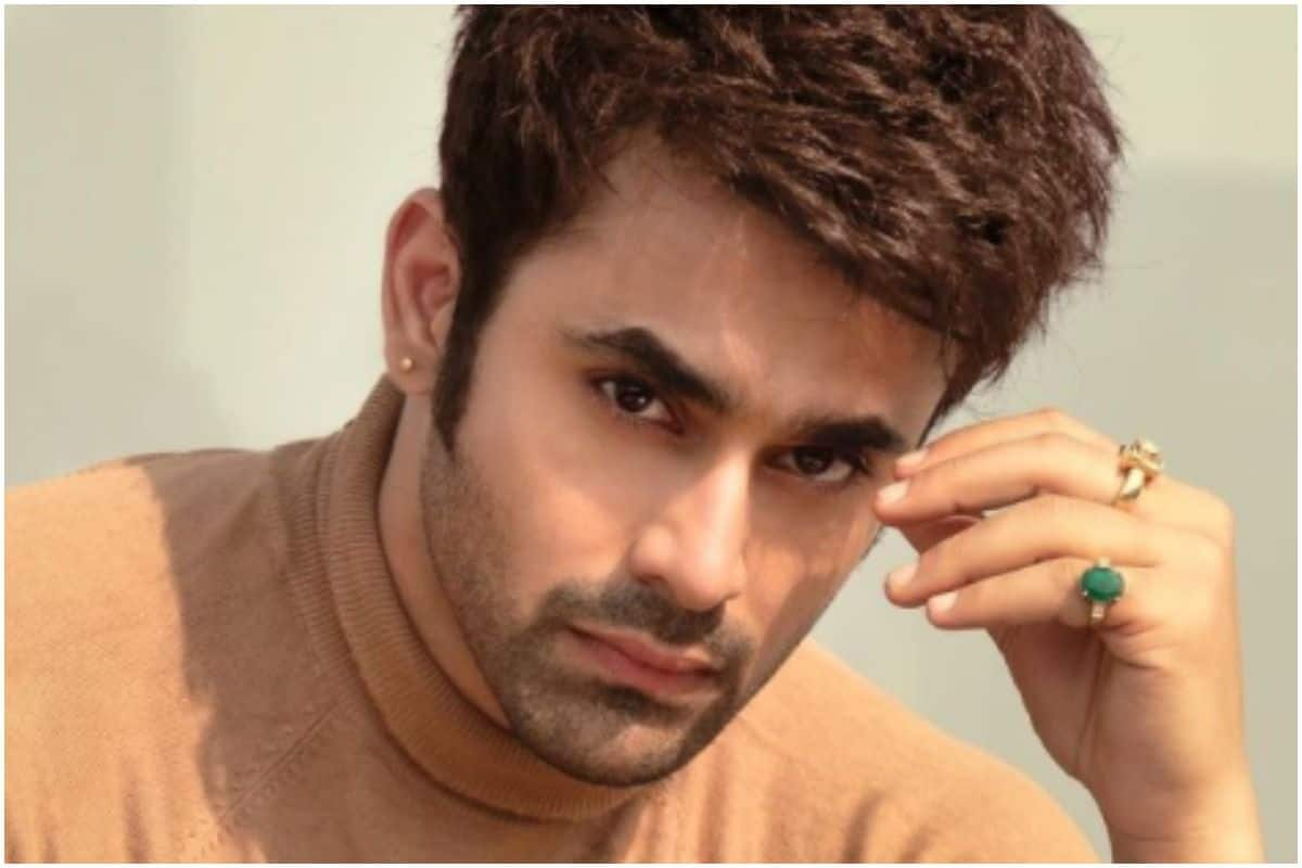 Naagin 3 Fame Pearl V Puri Arrested on Charges of Rape And Molestation
