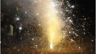 Ban on Sale, Use of Firecrackers: How These States Take Strict Measures to Bring Air Pollution Under Control
