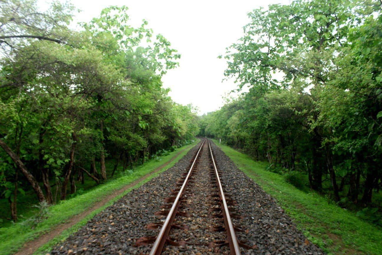 Breathtaking Monsoon As Captured Through The Lens of Western Railways   Photos